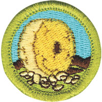 Invention Merit Badge